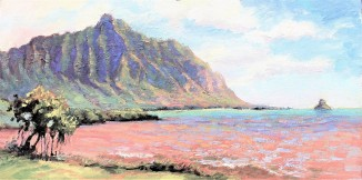 208. Waiahole Mud Flats 12x24 canvas